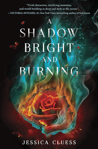 Blog Tour: A Shadow Bright And Burning